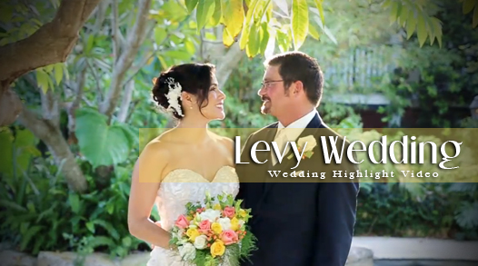 Levy Wedding Video