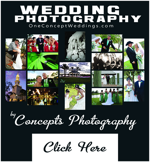 Wedding Photography Concepts Photography