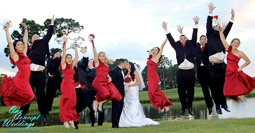 Viens Wedding Photography 11