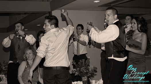 Viens Wedding Photography 23