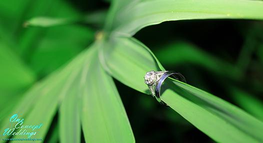 Viens Wedding Photography 6