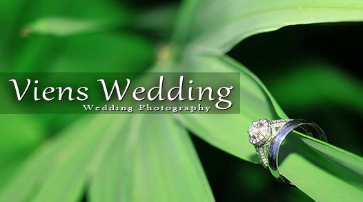 Viens Wedding Photography