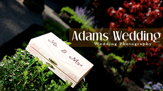 Adams Wedding Adams Wedding Photography