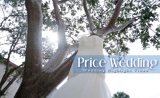 Price Wedding Video